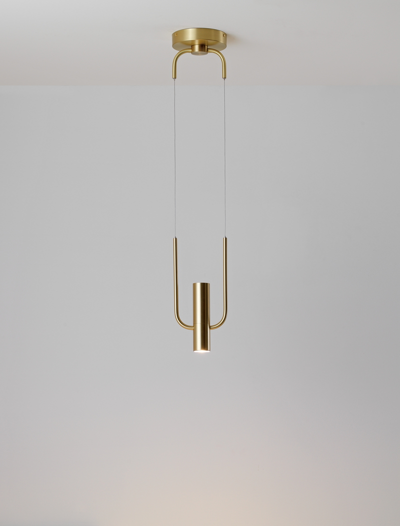 Golden Metal Hanging Lamps Indoor Pendant Lighting (4208101)